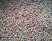 Закупаем зерноотходы,  некондицию