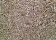 Зерновідходи,  некондиція,  бите зерно,  зерносуміші. Закуповуємо дорого.